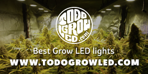 todogrowled_instagram